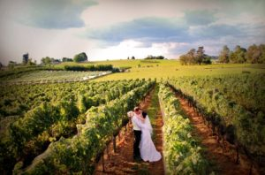 Marlborough eloping weddings New Zealand